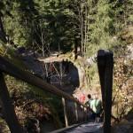 Fichtelgebirge Felsenlabyrinth 6